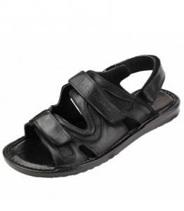 Сандалии мужские большого размера, фабрика обуви Walrus, каталог обуви Walrus,Ростов-на-Дону