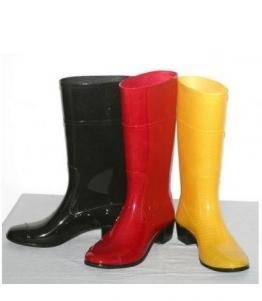 Сапоги ПВХ женские прозрачные, фабрика обуви Кристалл-ПЛЮС , каталог обуви Кристалл-ПЛЮС ,Крымск