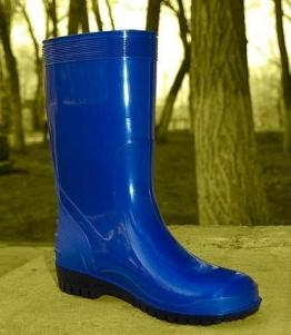 Сапоги ПВХ женские оптом, обувь оптом, каталог обуви, производитель обуви, Фабрика обуви АстОбувь, г. Астрахань
